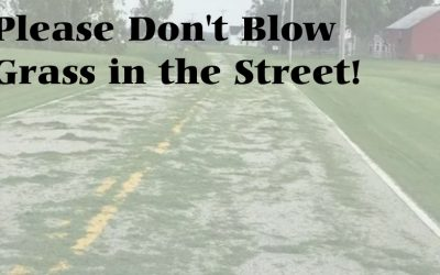 Please don't blow grass in the street